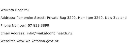 Waikato Hospital Address Contact Number